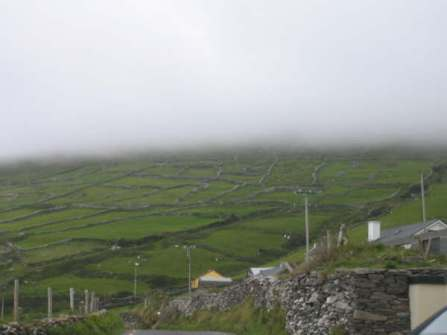 117 Stone fences, mist, green hills, sheep!