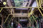 rumah pohon 4