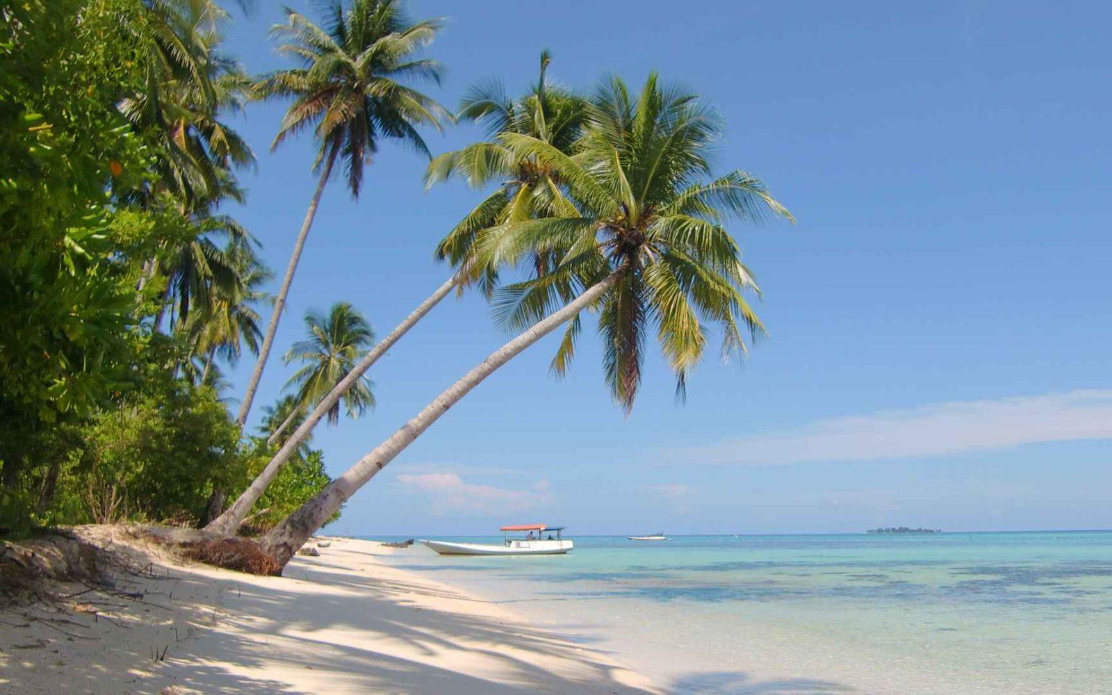 7 Daya Tarik Wisata Taman Nasional Karimunjawa Januari 2020