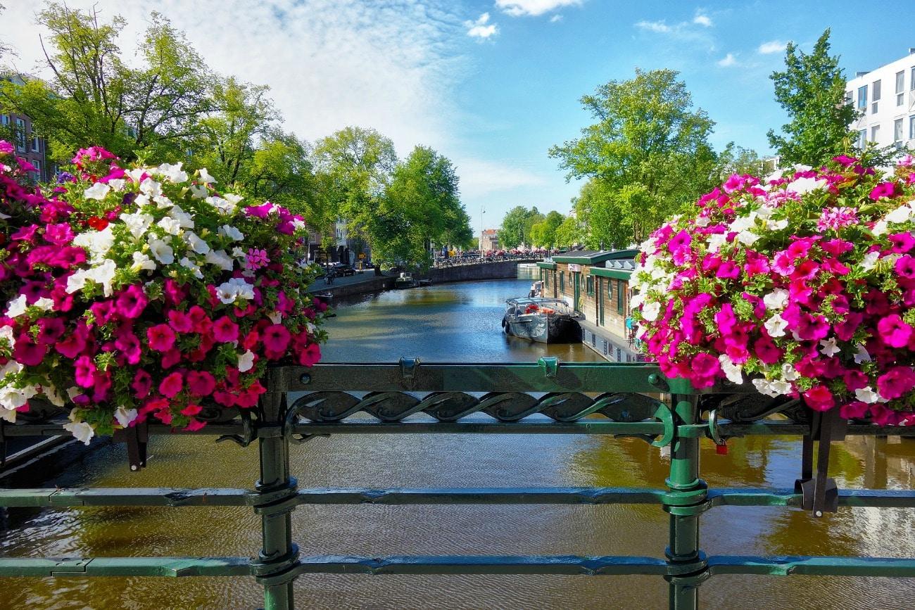 Amsterdam's Natural Wining & Dining