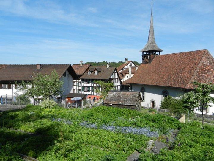 schweiz_fruehling (9)
