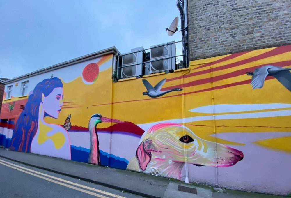 Spectacular Street Art in Dublin