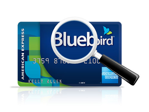 How to Manufacture Spend Using Bluebird