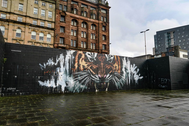 tiger merchant city glasgow street art tour