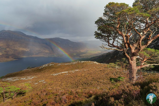 beinn eighe sutherland national trail
