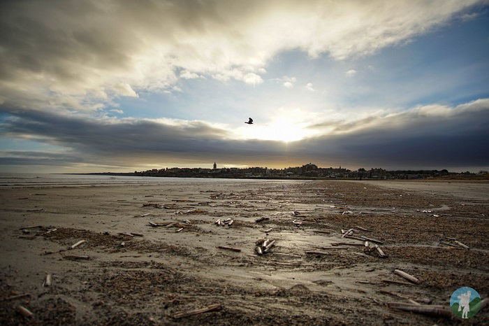 st andrews self catering accommodation beach