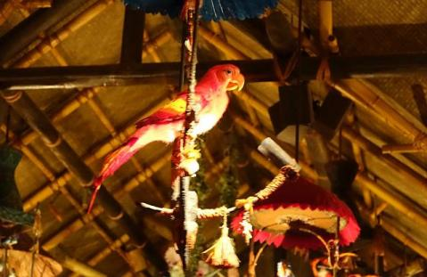 1.1434786525.the-birds-sing