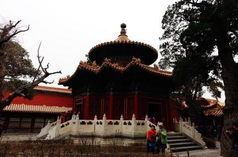 3.1458680489.pagoda