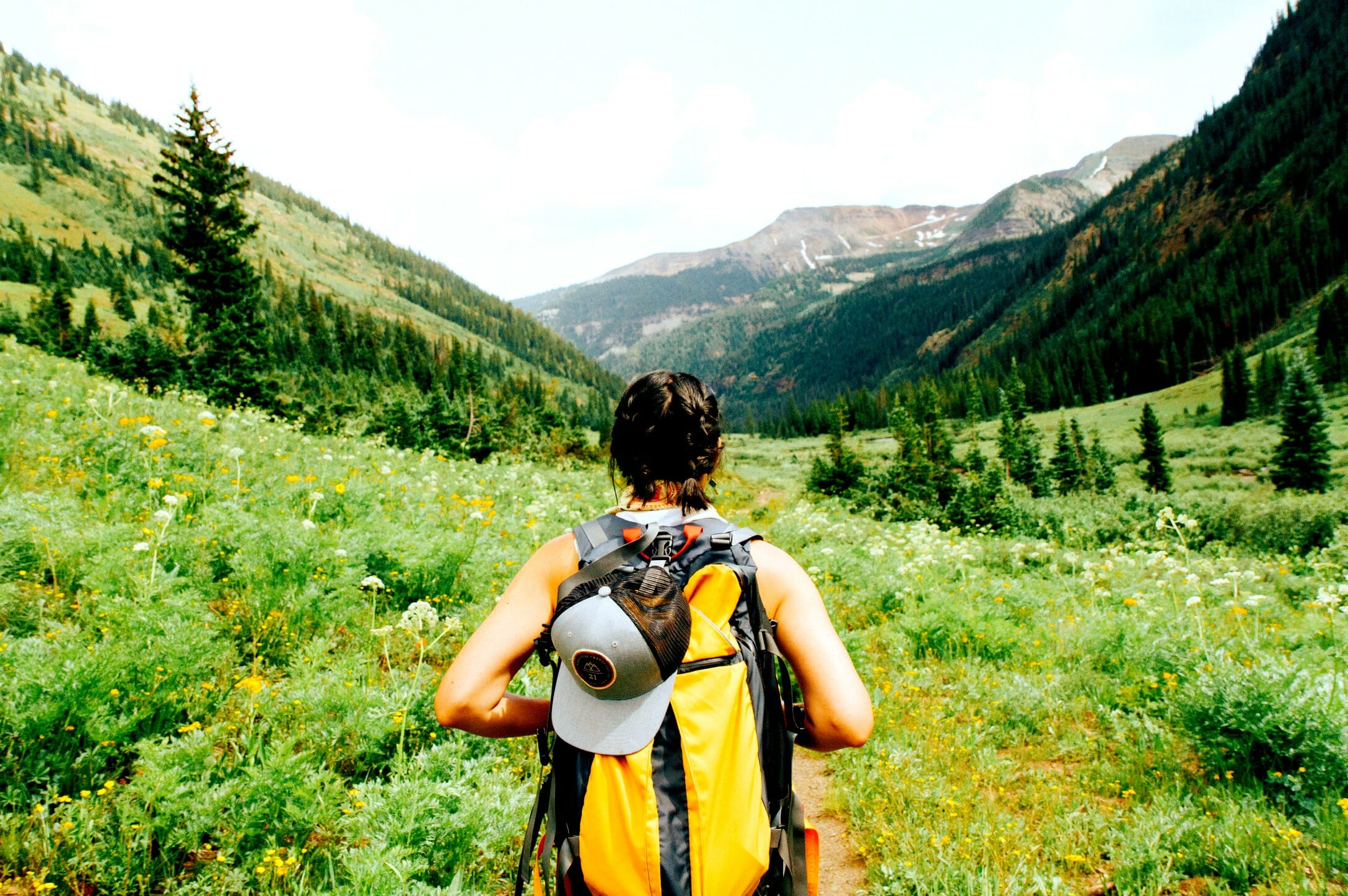 The Long Road Home: Why You Need a Hiking Stick Travels with Bibi