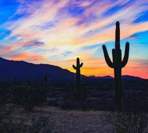 Valley of the Sun: A Self-Guided Road Trip Around Phoenix, Arizona Travels with Bibi
