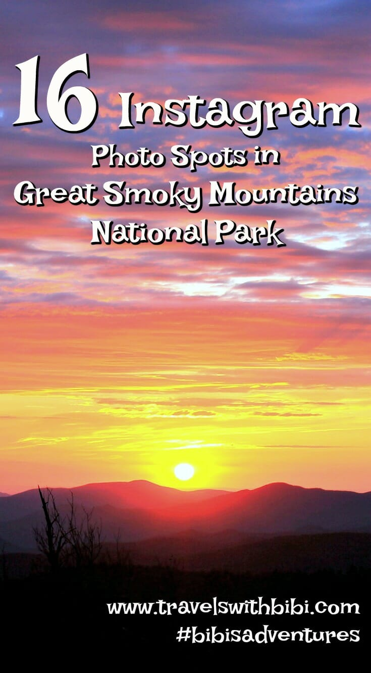 16 Instagram Worthy Photo Spots in Great Smoky Mountains National Park