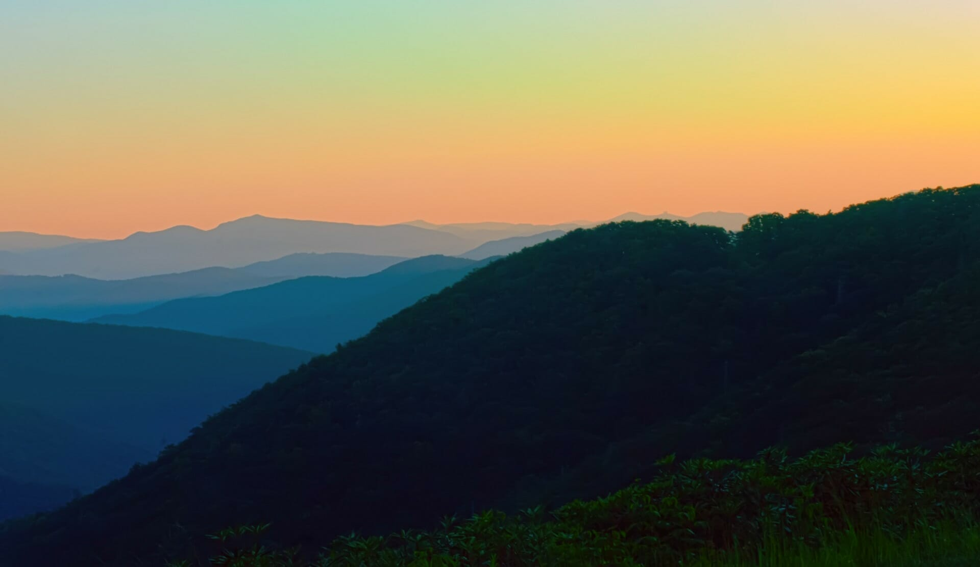 Great Smoky Mountains National Park Guide | Travels with Bibi