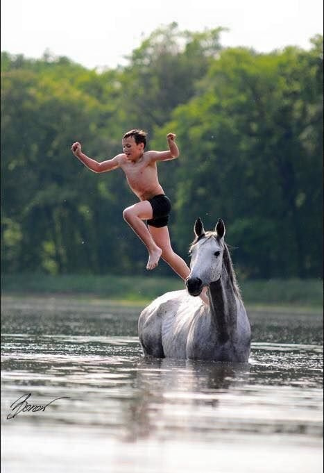 jumping off the white horse