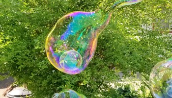 bubbles big