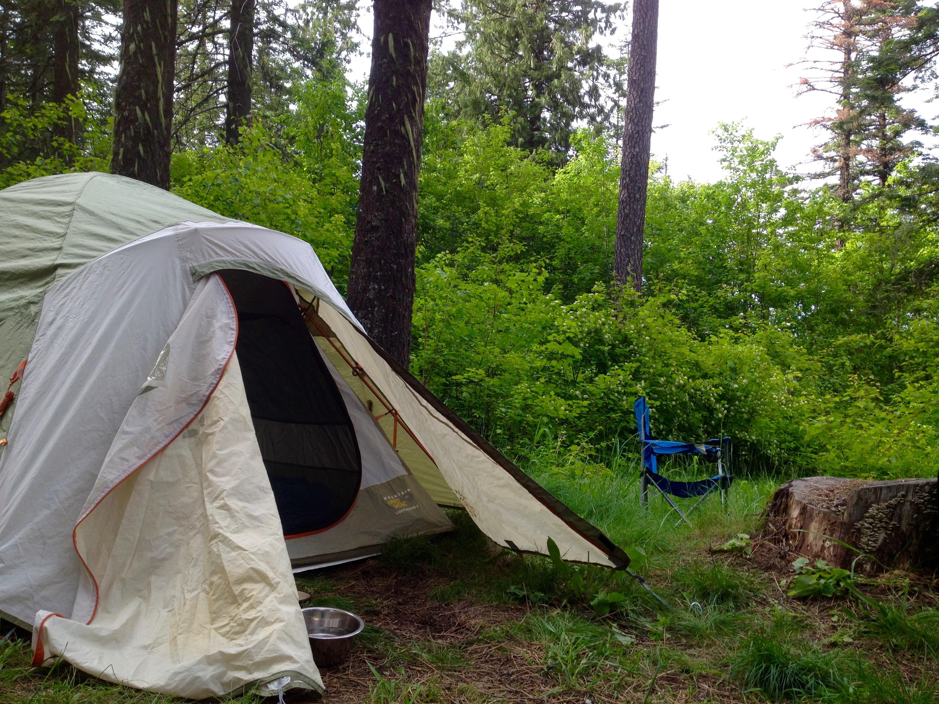 Tend Tended Tent & ORIGINAL