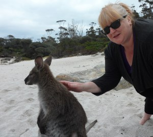 The wallabies were surprisingly tame and curious.