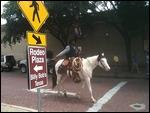 Texan cowboy in Fort Worth, Texas