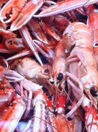 Crayfish on sale at Smögen fish market in Bohuslän, Sweden