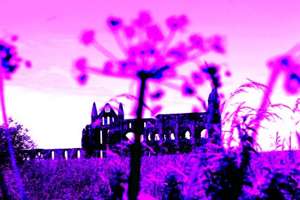 Whitby Abbey in Pink, North Yorkshire, England