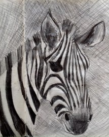 Sketch of a zebra the Serengeti, Tanzania