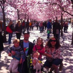 Ali and family under the blossom trees in Kungsträdgården, in Stockholm, Sweden