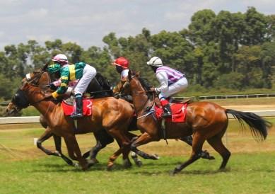 Horses racing past at Ngong Racecourse in Nairobi