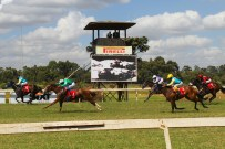 Heading down the home straight at Ngong Racecourse in Nairobi