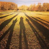Long autumnal shadows at Drottningholm Palace in Stockholm, Sweden