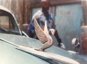 Flying swan hood ornament on an old American car in Havana, Cuba