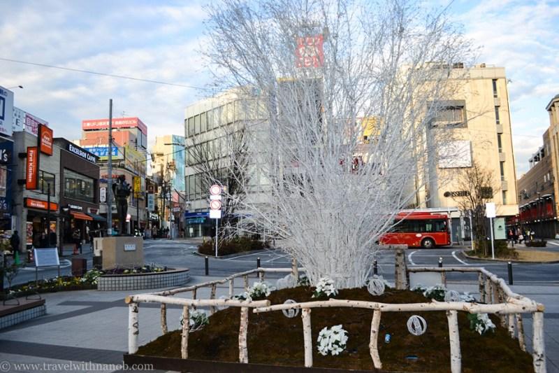 jiyugaoka-tokyo-28