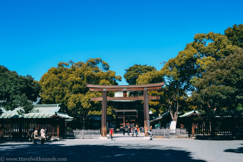 meiji-shrine-16