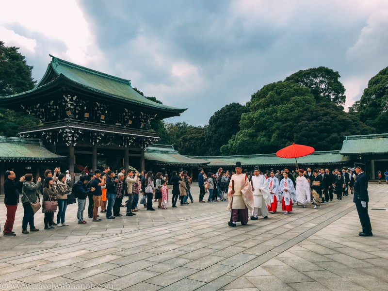 meiji-shrine-4