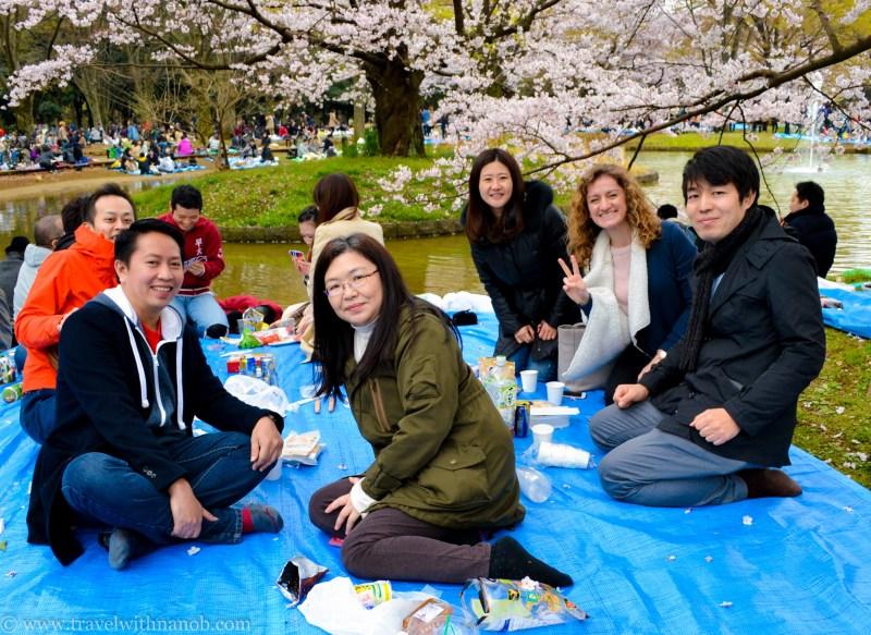 cherry-blossom-tokyo-42