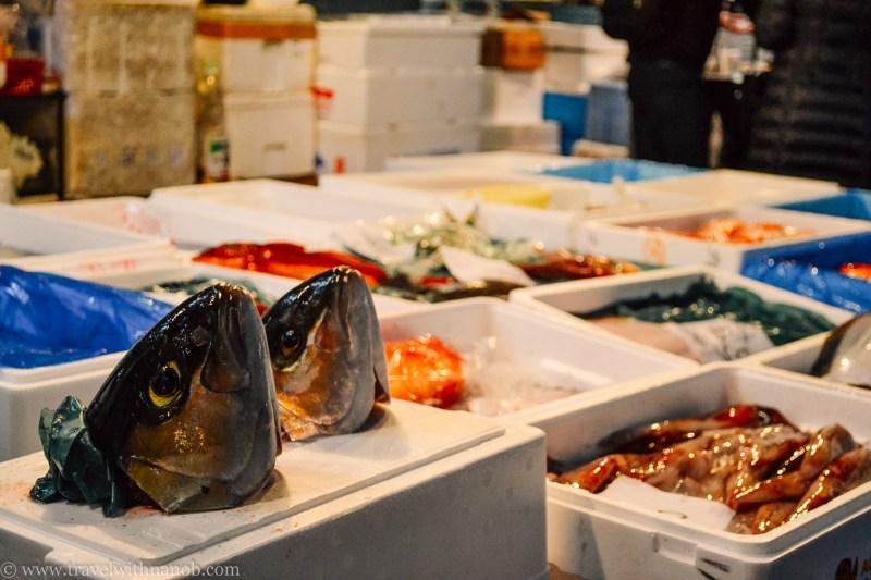 tsukiji-fish-market-tokyo-17
