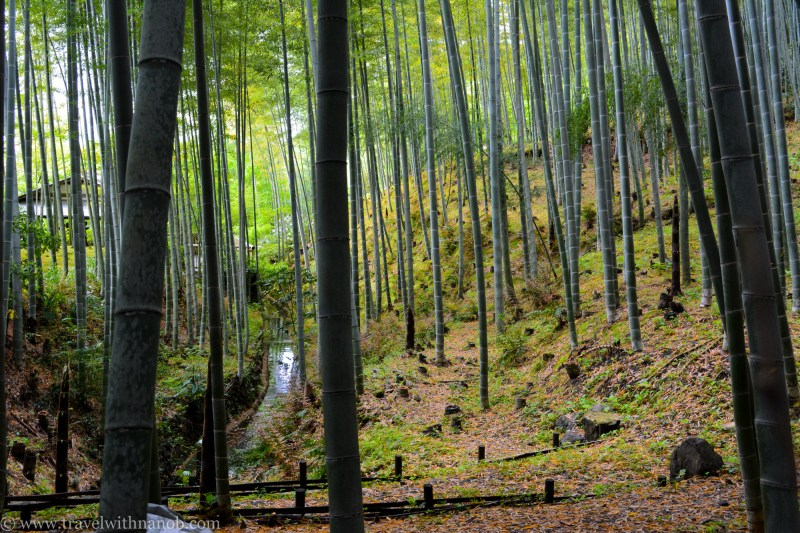 western-kyoto-guide-4