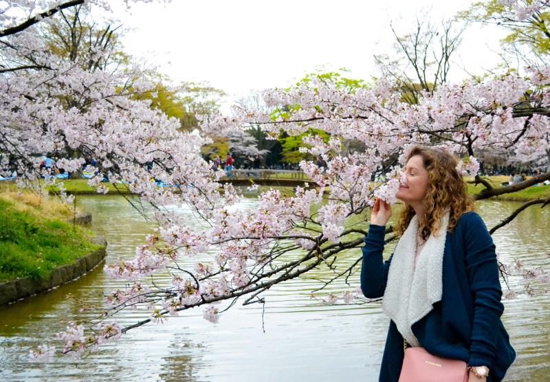 cherry-blossom-tokyo-37.JPG