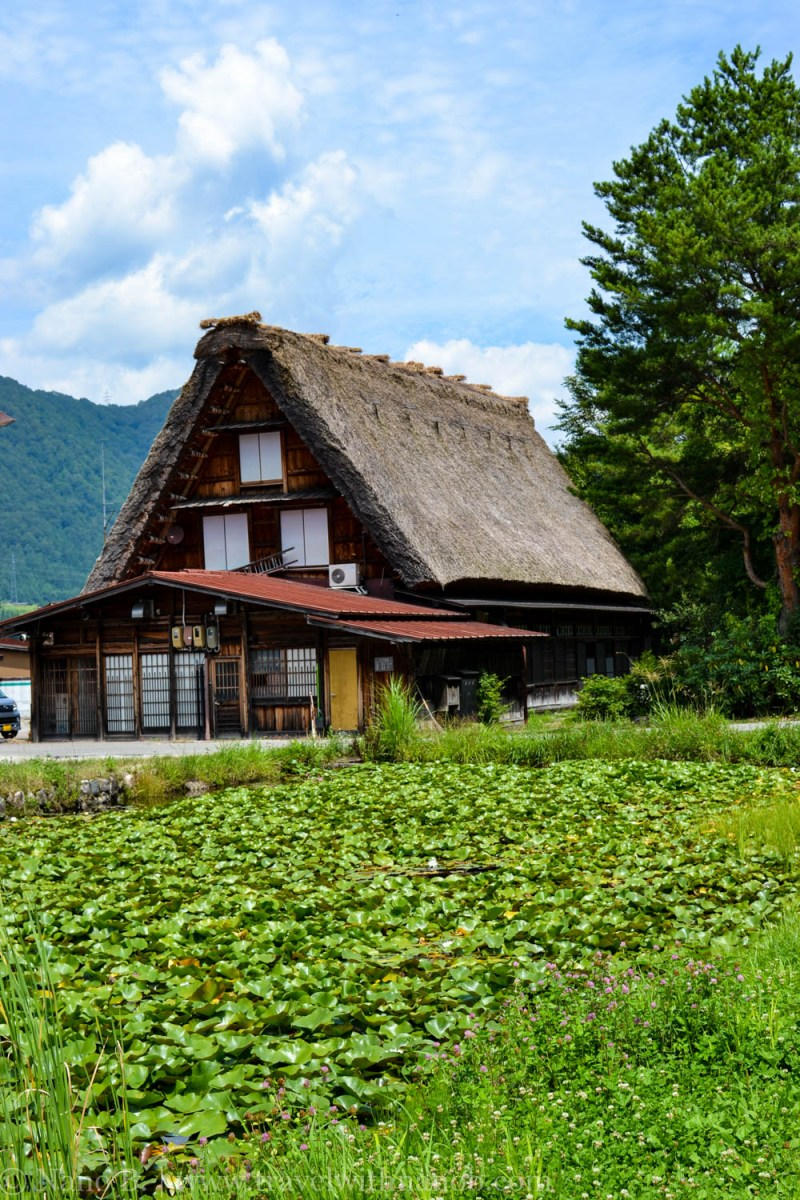 shirakawago-japan-34