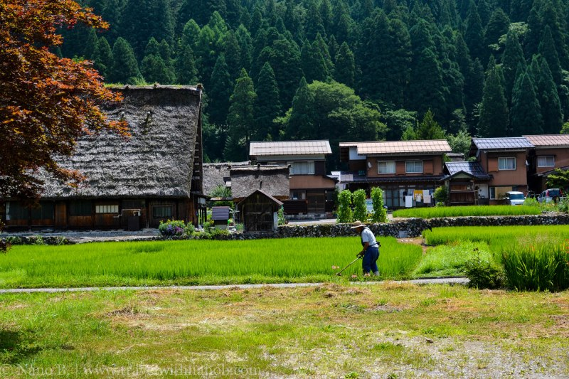 shirakawago-japan-37