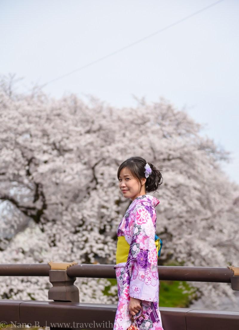 Kawagoe-Cherry-Blossom-52