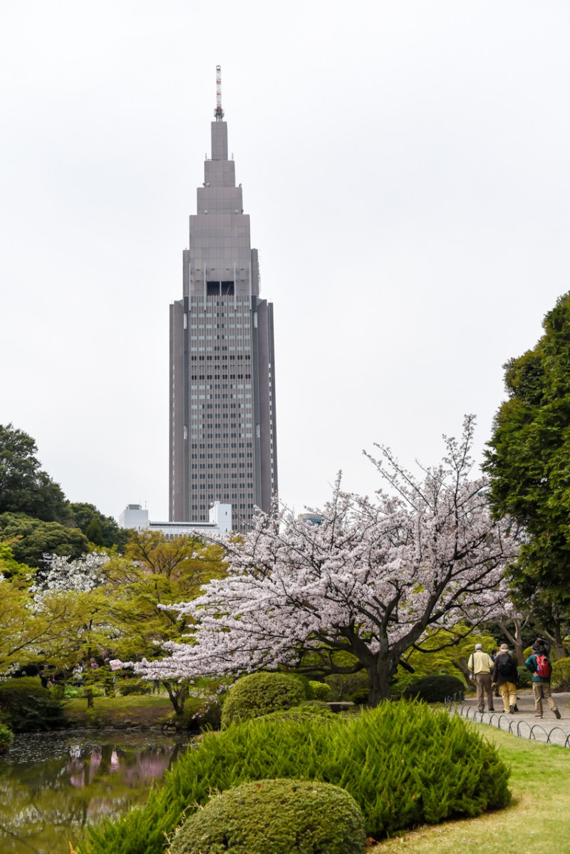 shinjuku-gyoen-garden-tokyo-11