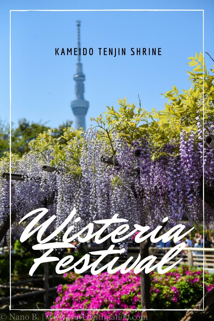 Wisteria Festival at Kameido Tenjin Shrine, Tokyo