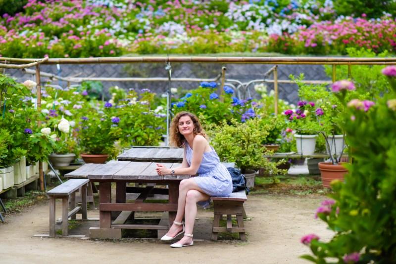 chiba-hydrangea-garden-38