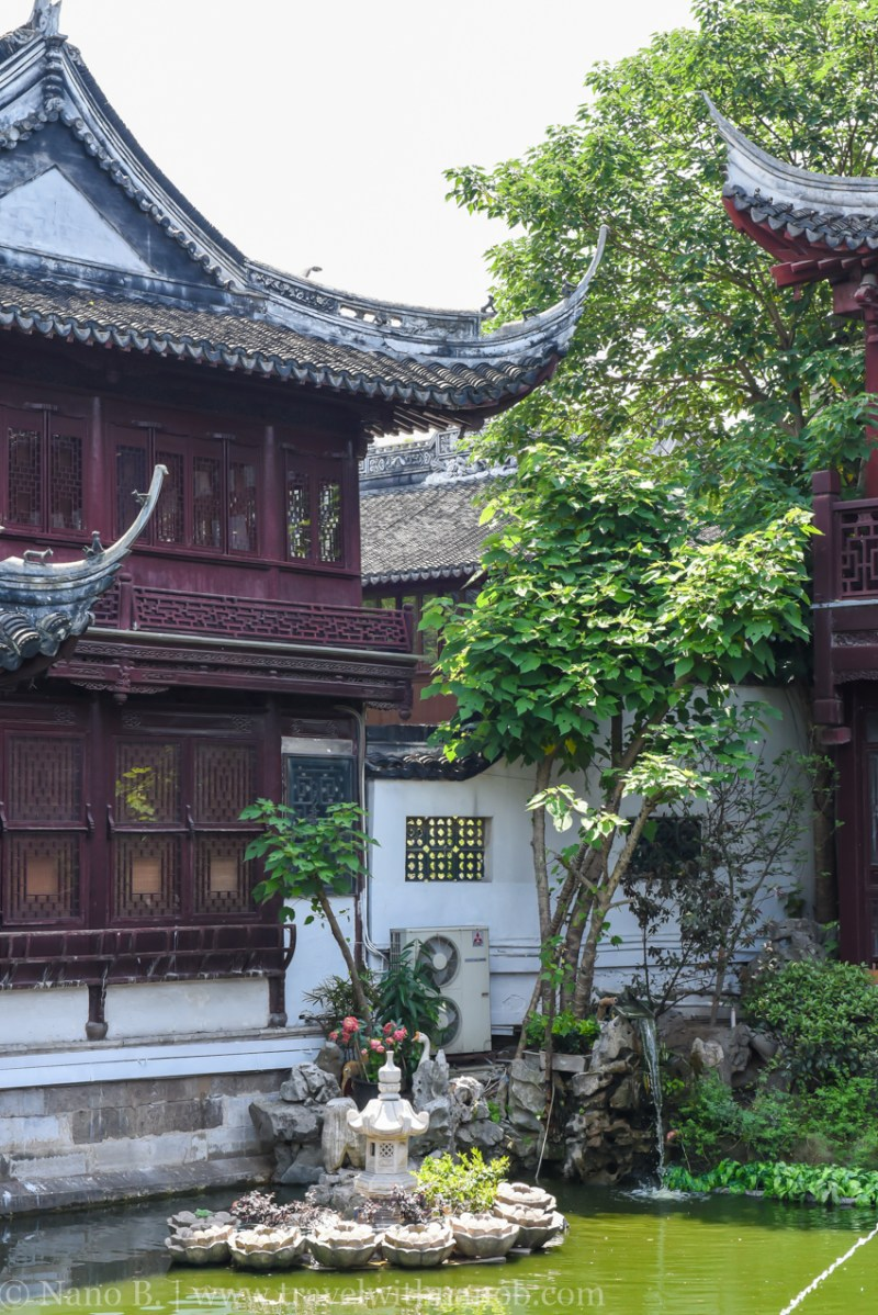 shanghai-things-to-do-69