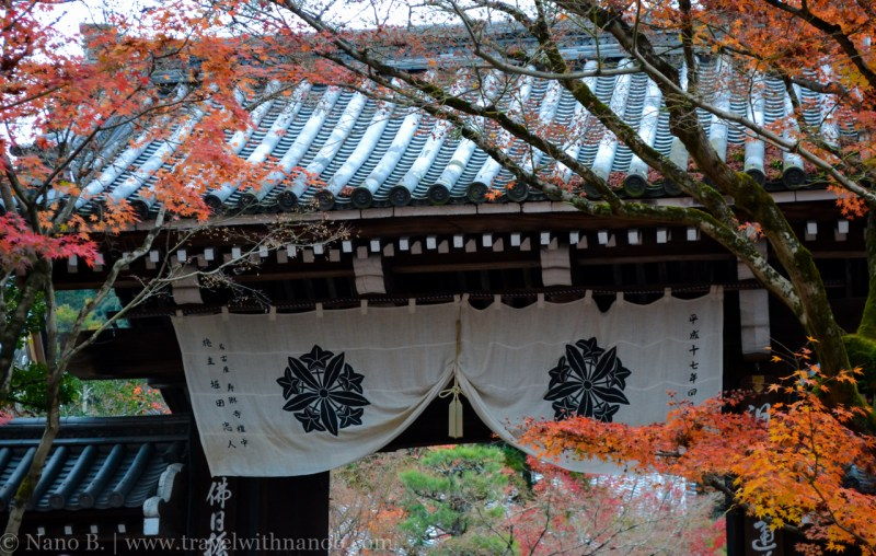 kyoto-autumn-leaves-19