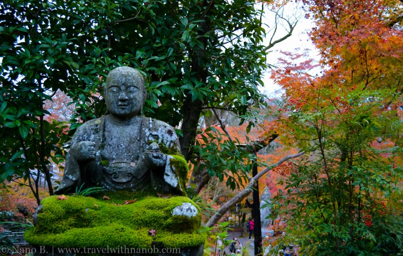 kyoto-autumn-leaves-21