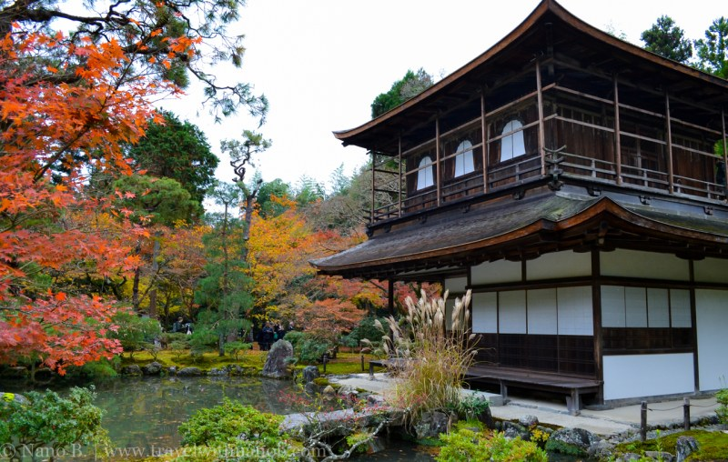 kyoto-autumn-leaves-42