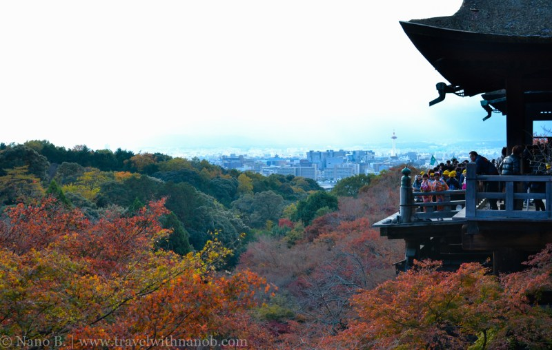 kyoto-autumn-leaves-57