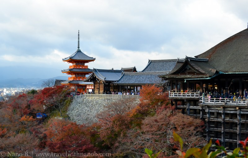 kyoto-autumn-leaves-58