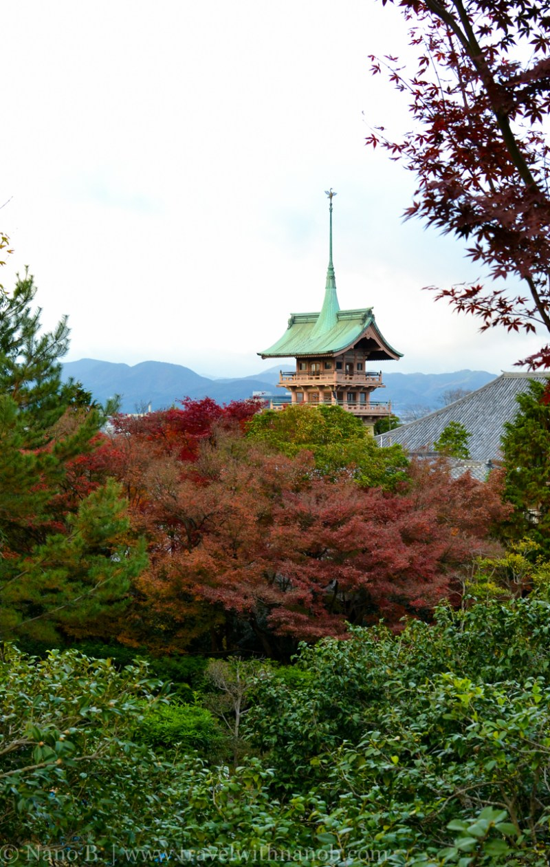 kyoto-autumn-leaves-65
