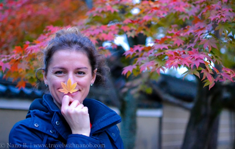 kyoto-autumn-leaves-67